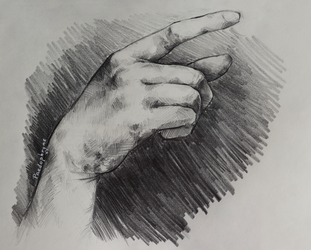 Hand study by Paedophryne