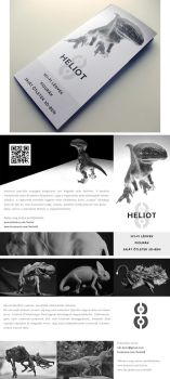 Heliot8 flyer by ThelastA