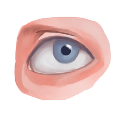 Realistic Eye by GraphiteForest