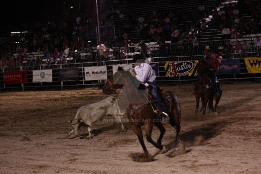 Calf Roping by Whilo