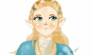 The Legend of Zelda Breath of the Wild Princess by Bubblesyt