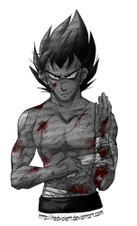 DBZ - Luck is in Soul at Home - Wounded by RedViolett