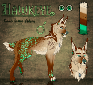 Hawkeyes reference sheet [comm] by Dachiia