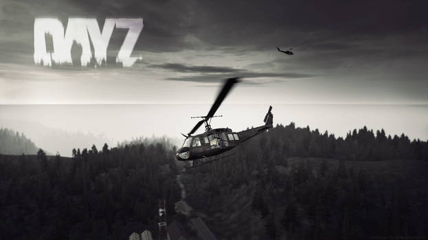 DayZ Wallpaper Panthera - Helicopters by Jehal
