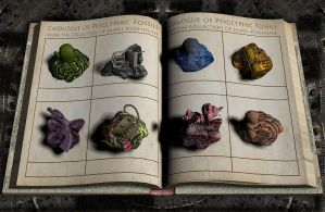 Fossil Book 2 by james119
