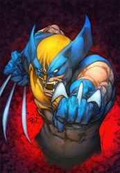 Wolverine by PANT by NicChapuis