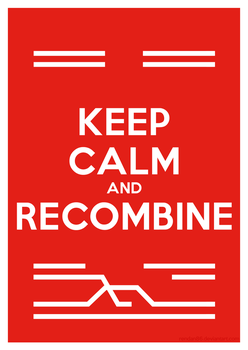 Keep Calm and Recombine by Rendan86