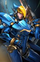 Pharah Overwatch Colors  by SaviorsSon