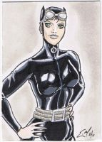 Catwoman PSC by JediDad
