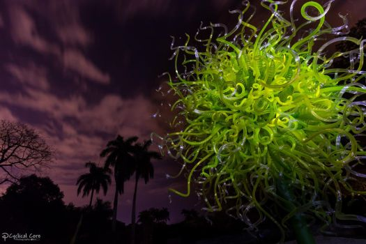 Chihuly yellow burst at night by CyclicalCore