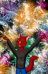 New Years' Explosions by AttackTheMap