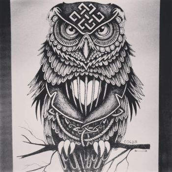 daveliciniart owl by Daveliciniart