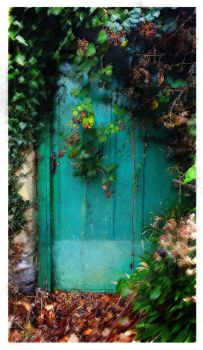 Green Door by struckdumb