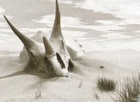 Old Triceratops photo by MedIllin