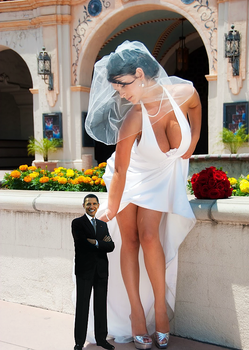 OBAMA WEDS HIS DREAM AMAZON by kong25