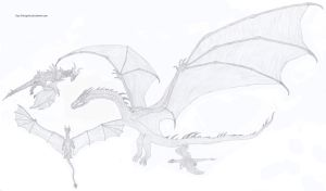 Alduin, Smaug, Draco, Saphira by Guy-Inkognito