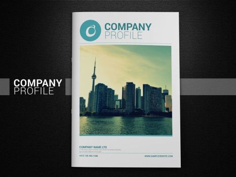 Company Profile by afizs