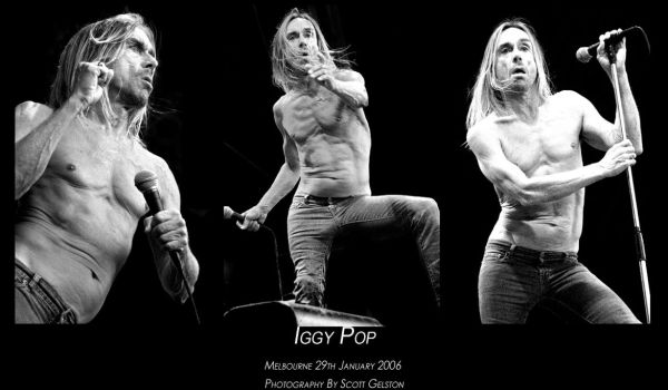 Iggy pop by burntcitizen