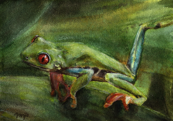 aceo treefrog by kailavmp