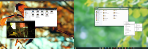 Double OS by neodesktop