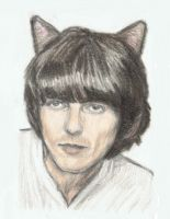 George Harrison as a cat by gagambo