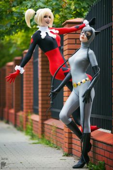 Classic Harley Quinn and Catwoman by Rei-Doll