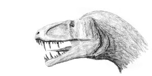 allosauroid shaded by dracontes