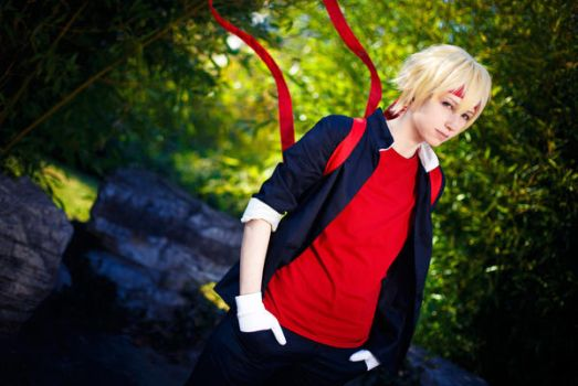 Drrr!! - Shizuo by TaaDaah