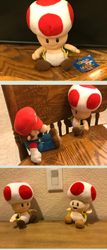 Quick Mario Party 5 Toad plush pics by CloudySkies17695