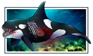 Orca Zombie by ArcaneAvis