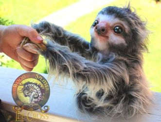Handmade Fully Poseable Baby SLOTH! by Wood-Splitter-Lee