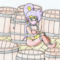 Shantae's Explosive Barrel Peril by TraceMem