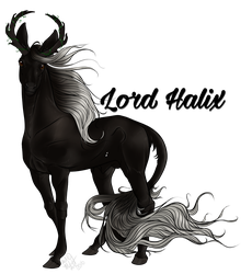 Lord Halix   Stag   Queen's Line Royal by SunsetRevelation