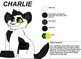 Charlie Character Sheet by Charlie-Breen