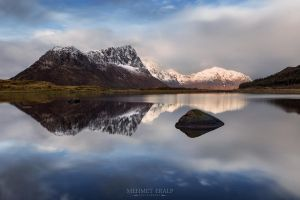 Cold Lofoten Morning by m-eralp