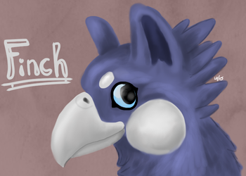Finch by Puffinca