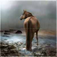 Surrender to alone by Sarahroo
