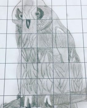 Solving a owl drawing puzzle by Everestlover12