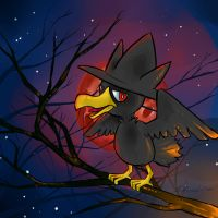 Murkrow's Night