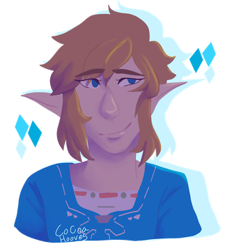 link by cocoa-hooves