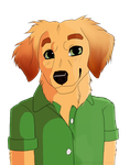 Ralphie the Golden Retriever by pinkykyra
