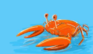 crab on water by chaitanyak