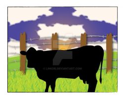 Cow at Sunset by Linkdb