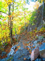 Maine Fall by bleu-claire-stock