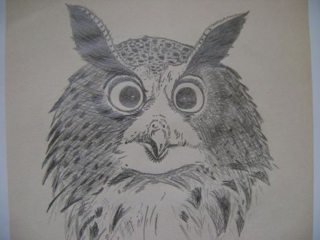 Another Owl by PZZL