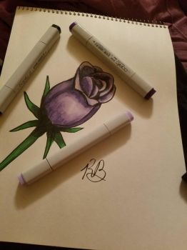 Purple Rose by XINights