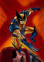 Wolverine Colors by nic011