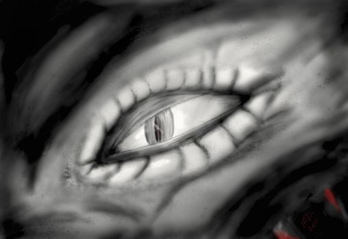 The Eye of Intuos by Mikejl
