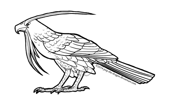 forest hawk 2 coloring page by jeep the dragon
