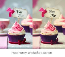 Free honey photoshop action by lilydust